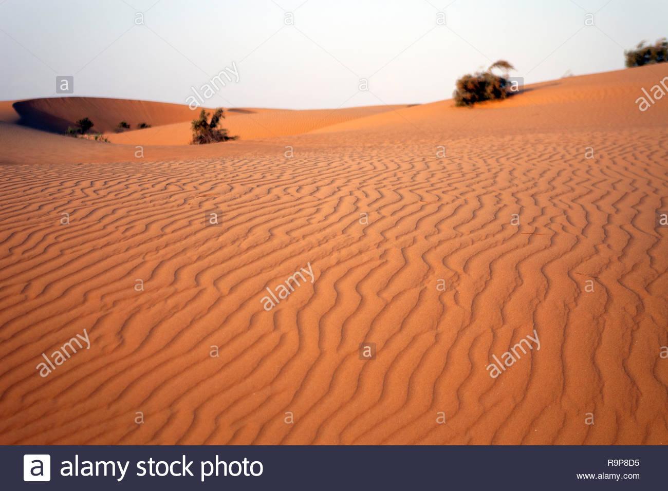 Sand dune in Western Sahara Stock Photo