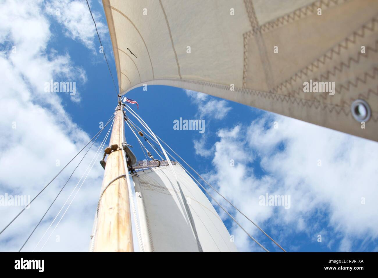 Looking up the mast on a traditional gaff rigged yacht / sailing boat, against a blue sky with little white clouds. It is windy and bright, and the fo - Stock Image