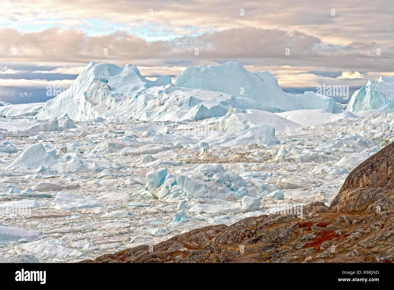 Massive Icebergs in a Frozen Fjord in the Icefjord of Ilulissat, Greenland - Stock Image