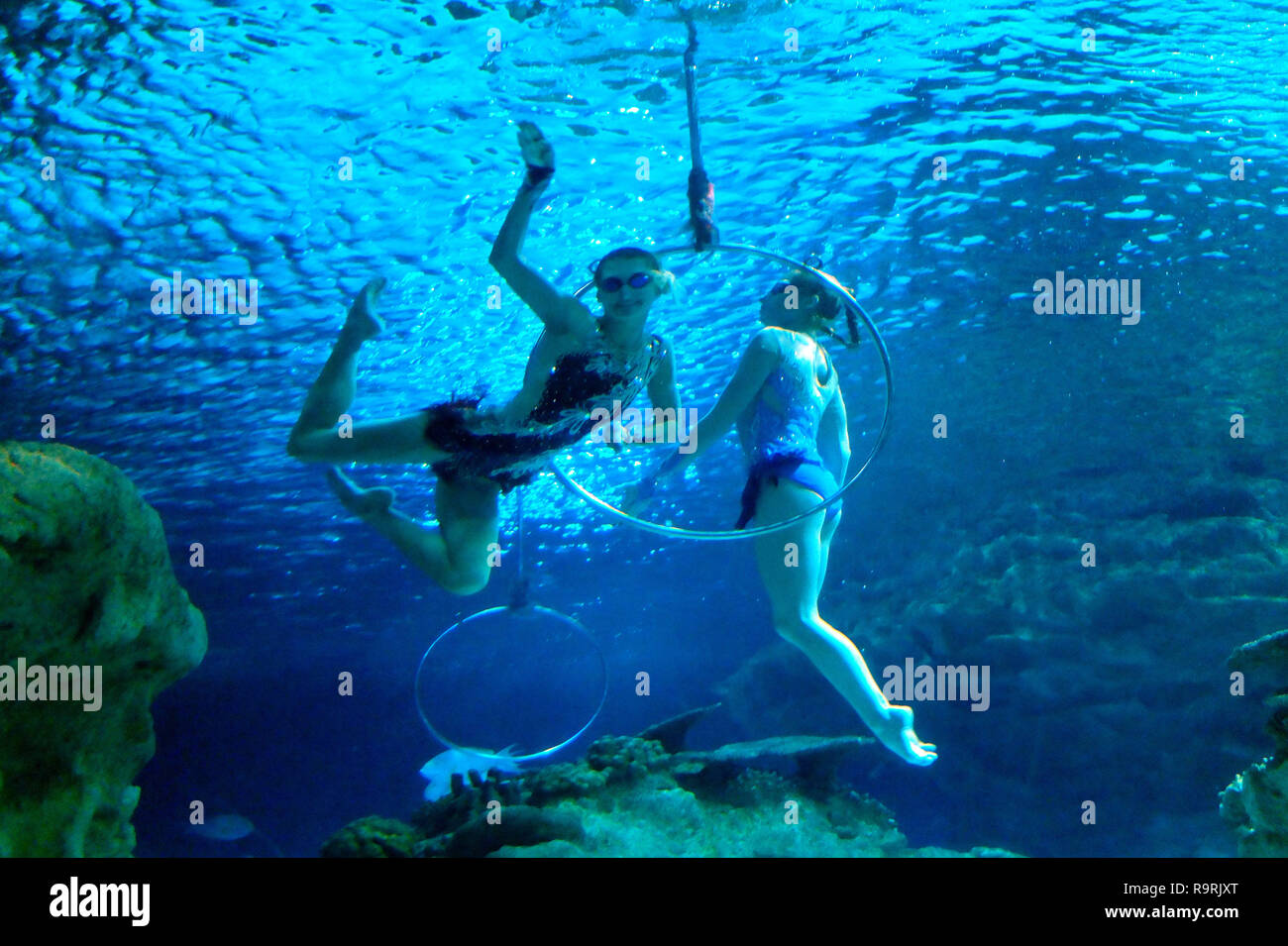 Real underwater world Hidden City Beijing Chinabeijing Fuguo Underwater World Is Located At South Gate Of Worker Stadium Chaoyang District Which Is The First Fivestar Marine Aquarium In Beijing Beijing China 27th Dec 2018 Beijing Chinabeijing