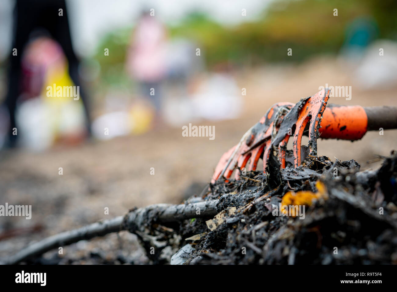 Closeup orange rake on pile of dirty waste on blurred background of volunteer clean up beach. Beach environmental pollution concept Tidying up rubbish - Stock Image