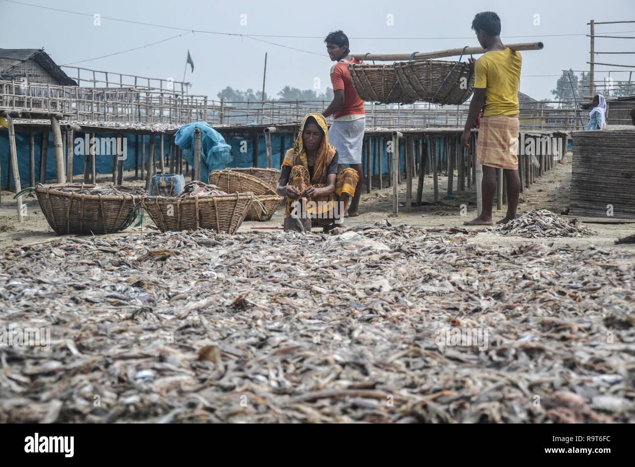 women laborers dried fish in a village at saint martin island in Cox's Bazar, Bangladesh © Nazmul Islam/AlamyStock - Stock Image