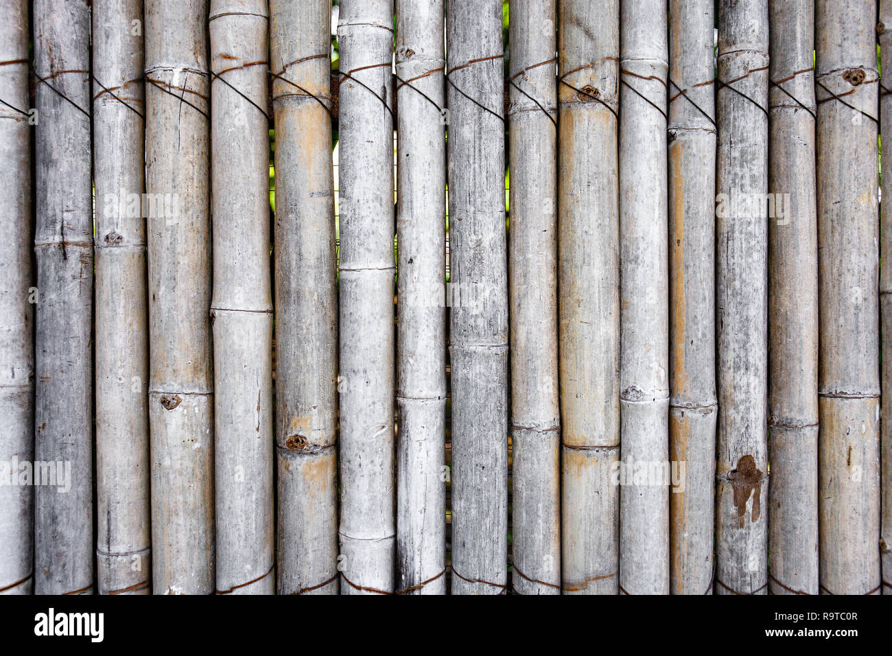 Old bamboo fence in the garden, Cozy decorating idea for patio, balcony for gardening. - Stock Image
