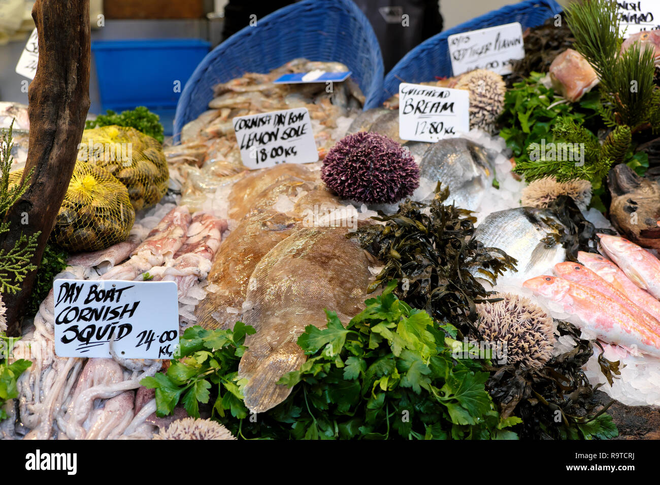 Borough Market London fish stall display of  Cornish squid, Lemon Sole & Gateshead Bream with parsley and various seafood in Britain UK  KATHY DEWITT Stock Photo