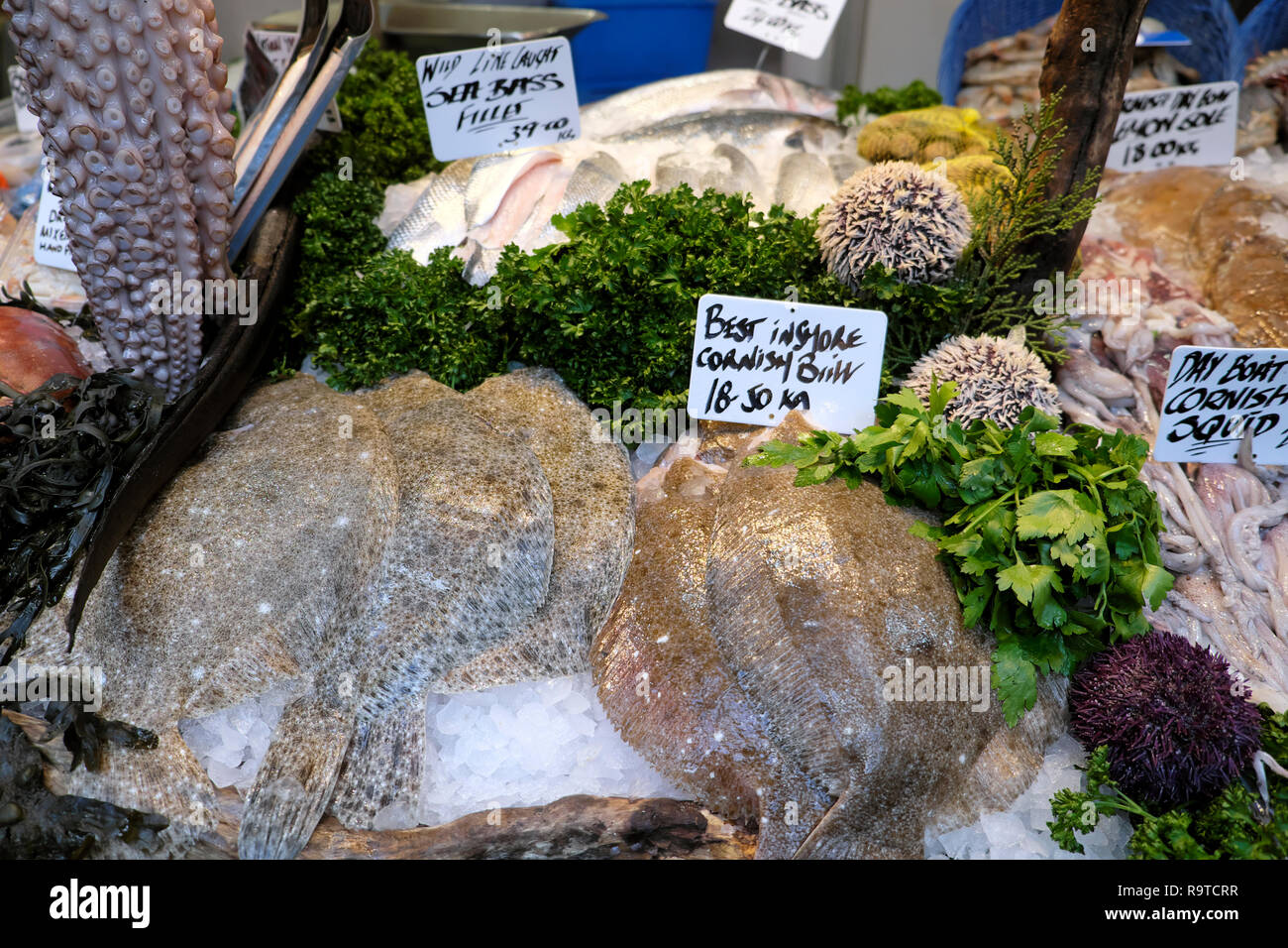 Borough Market London fish stall display of best Inshore Cornish Brill fillets & octopus with parsley and various seafood in Southwark  KATHY DEWITT Stock Photo