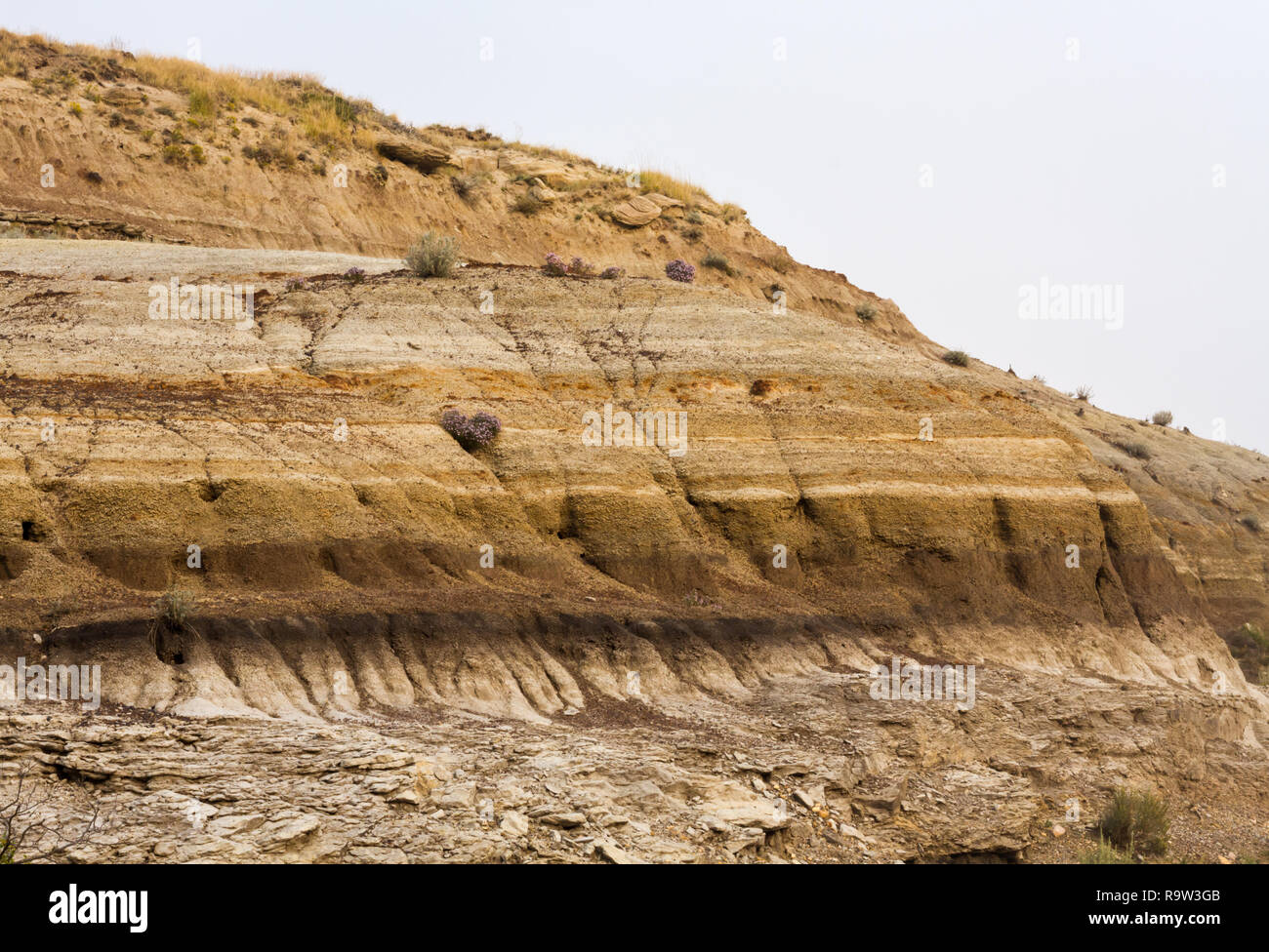 The distinctive Badlands, where dinosaurs once roamed, during the scorching hot summer of 2017 near Drumheller, Alberta, Canada - Stock Image