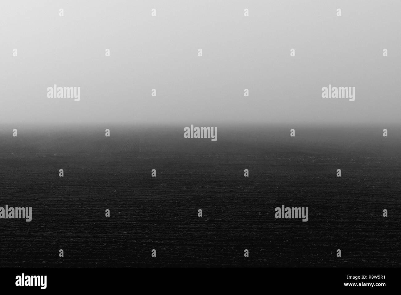 foggy acre in Brandenburg, Germany - Stock Image