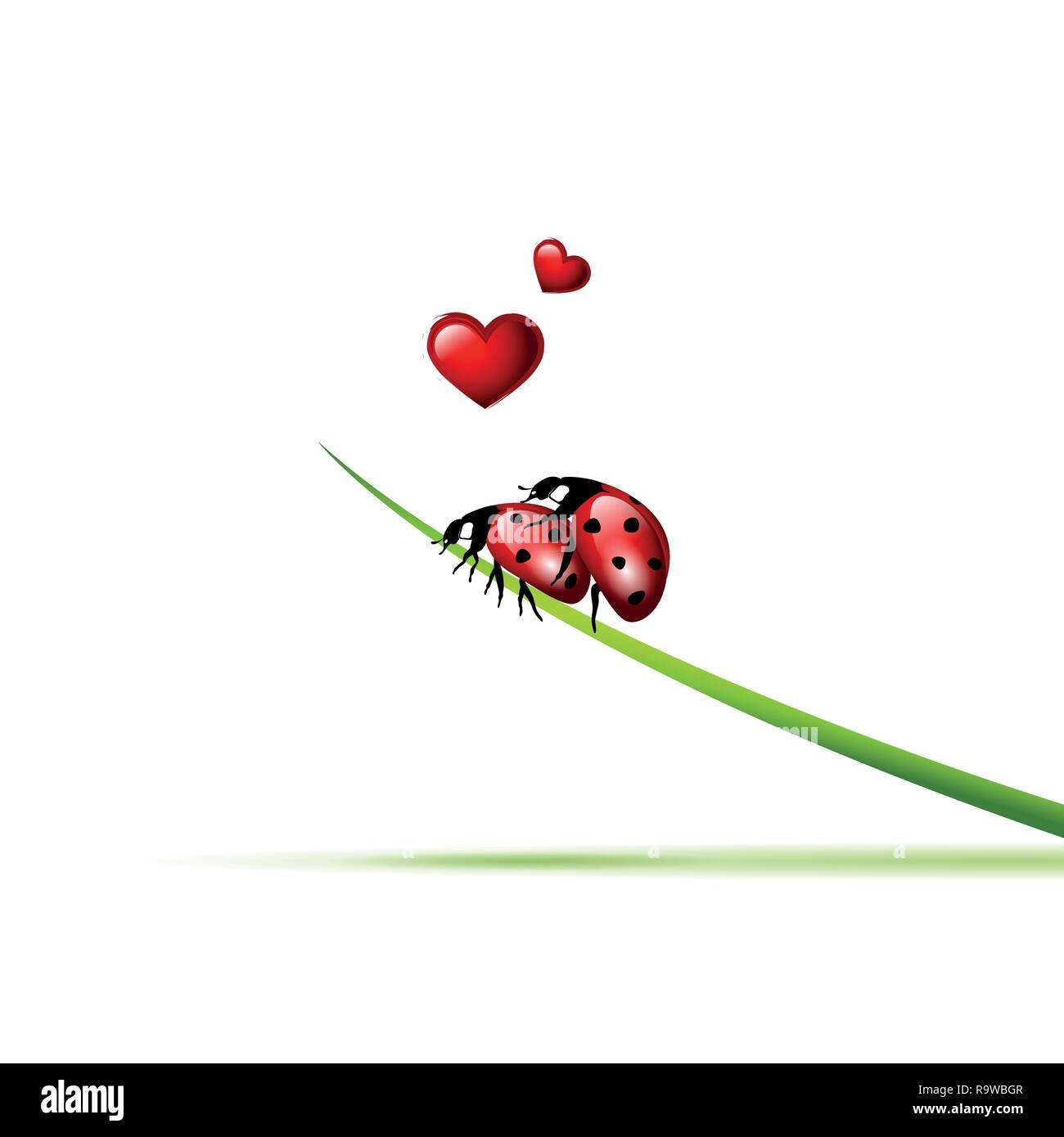 two ladybugs make love on a blade of grass vector illustration EPS10 - Stock Vector