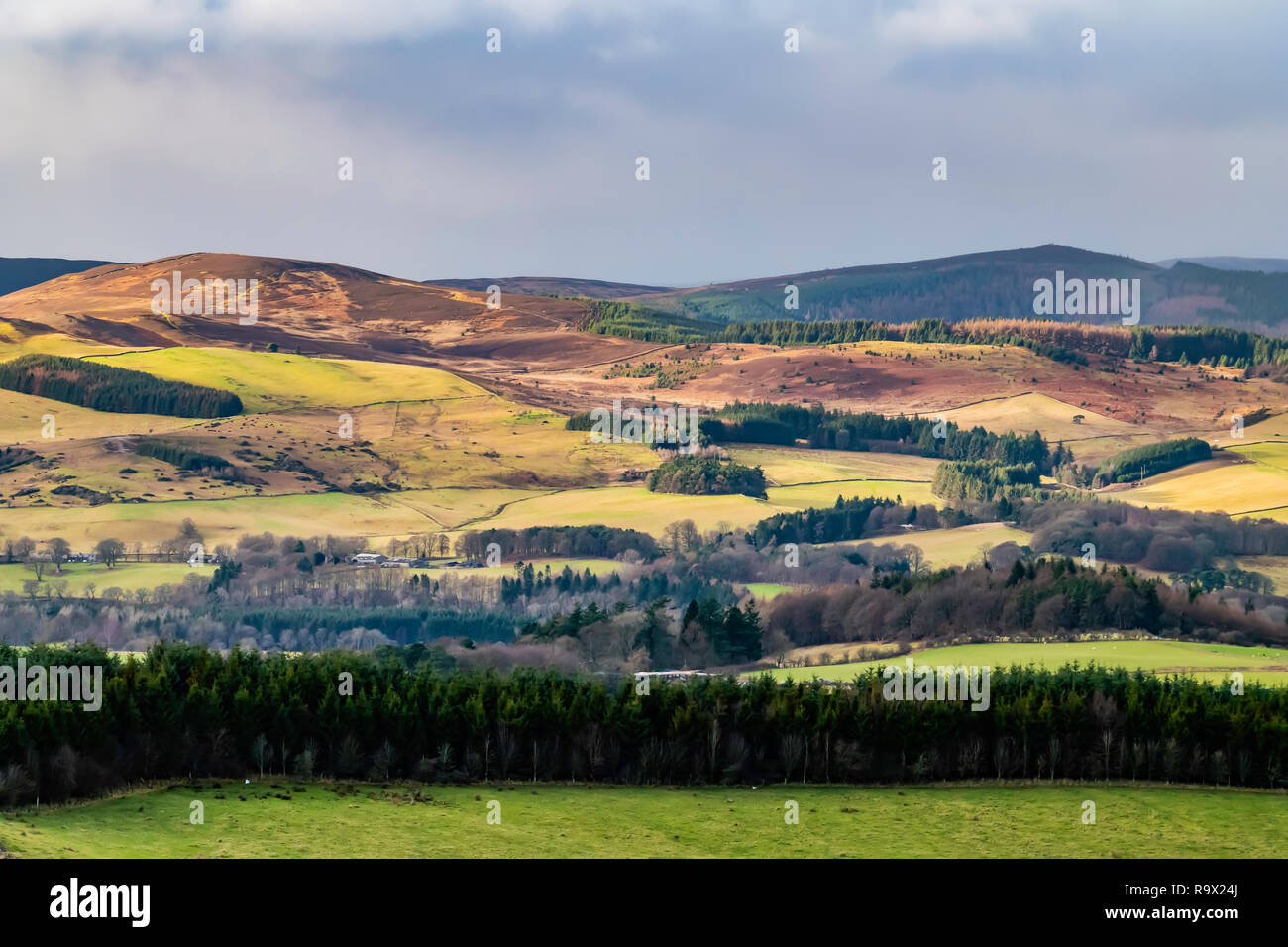 Selkirk, Scottish Borders, UK. 22nd December 2018. Sunshine illuminates Linglie Hill and the Three Brethens, the hillsides marches are patrolled durin Stock Photo