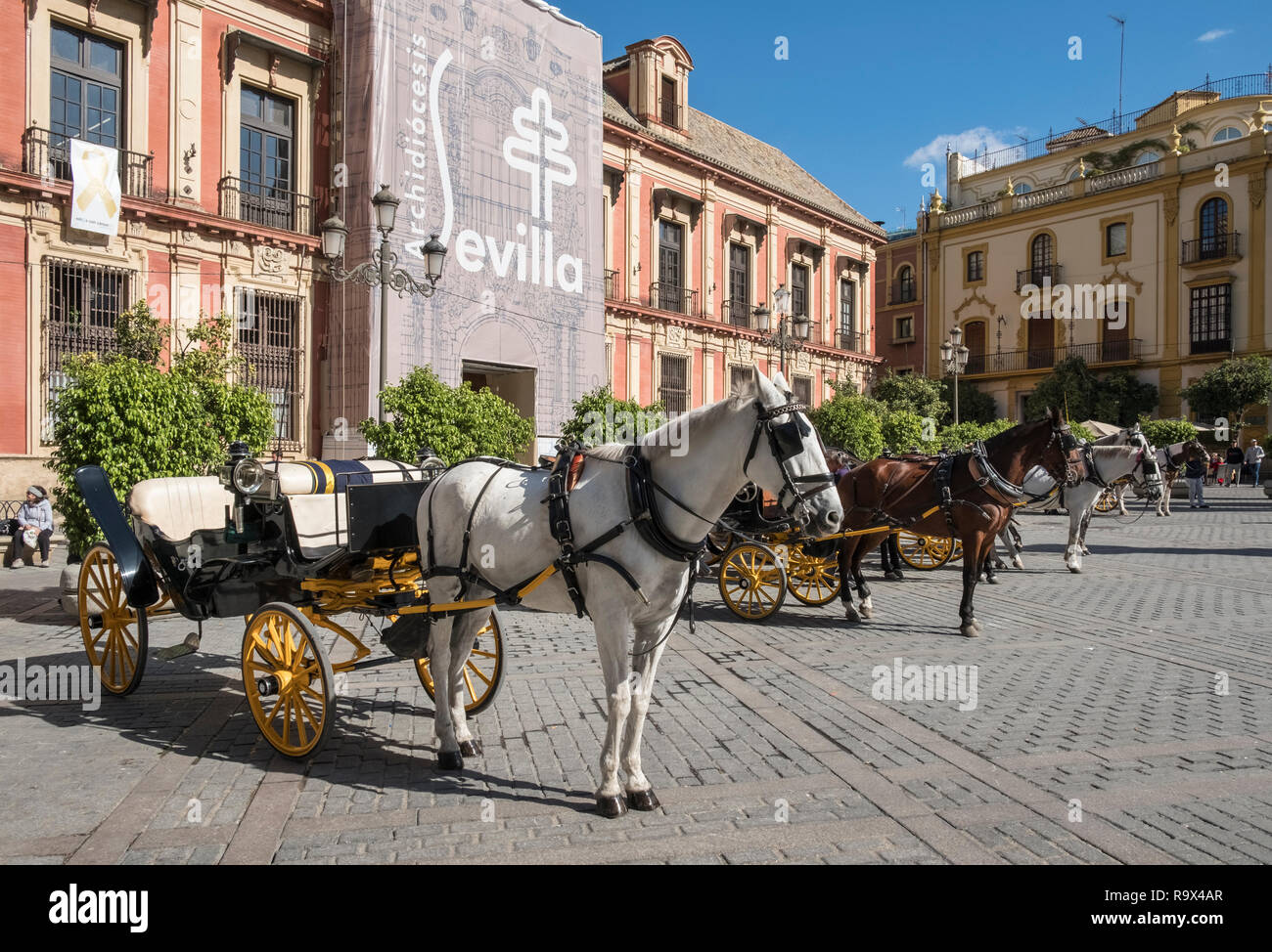 Popular tourist spot with horse drawn carriages in Plaza Virgen de los Reyes, Seville, Spain Stock Photo