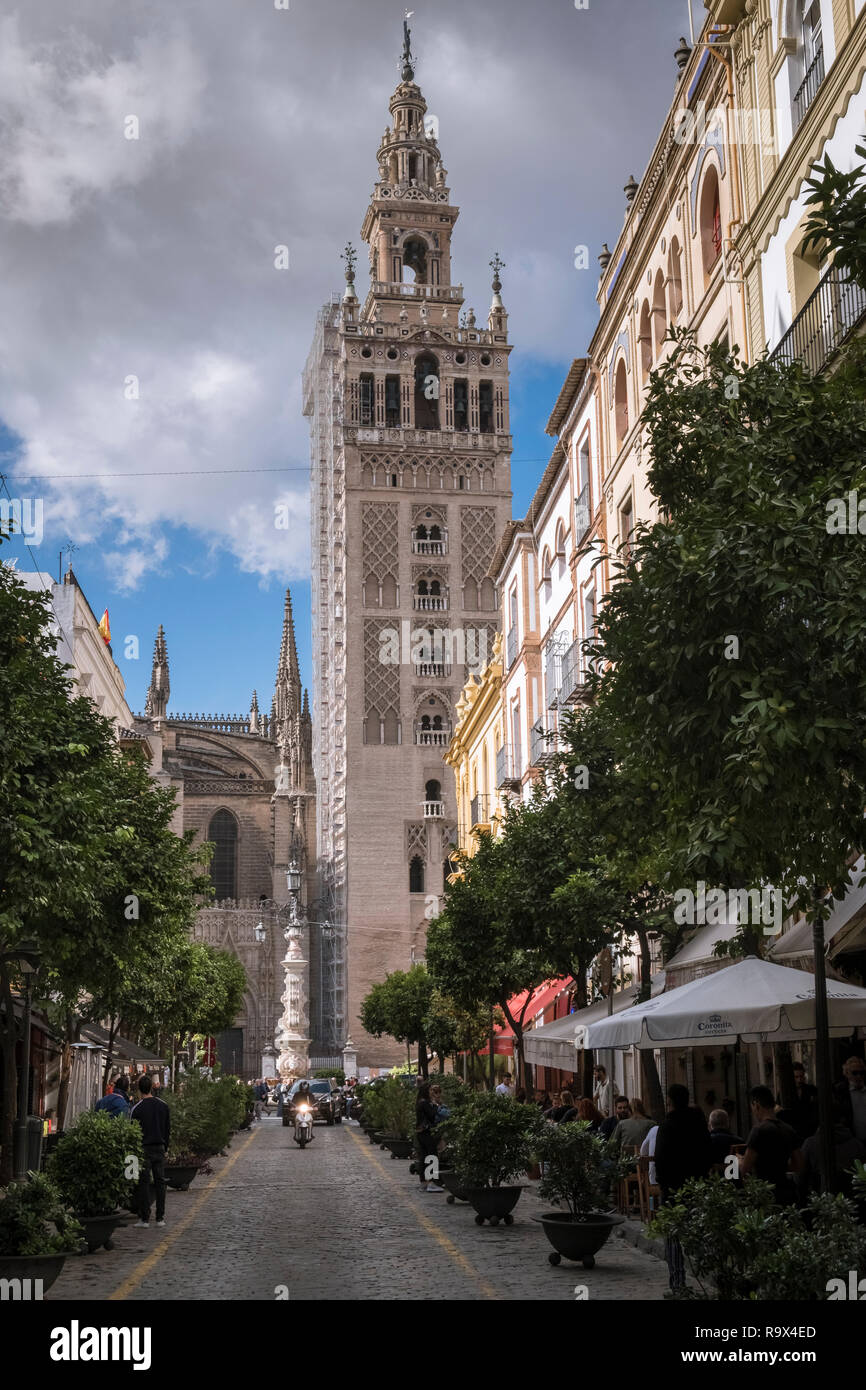 The Giralda bell tower of Seville Cathedral, a local city landmark and UNESCO world heritage site, Seville, Andalucia, Spain. Stock Photo
