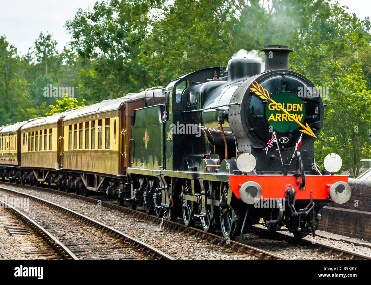 British Railways 30541 on Golden Arrow duty on the Bluebell Line - Stock Image
