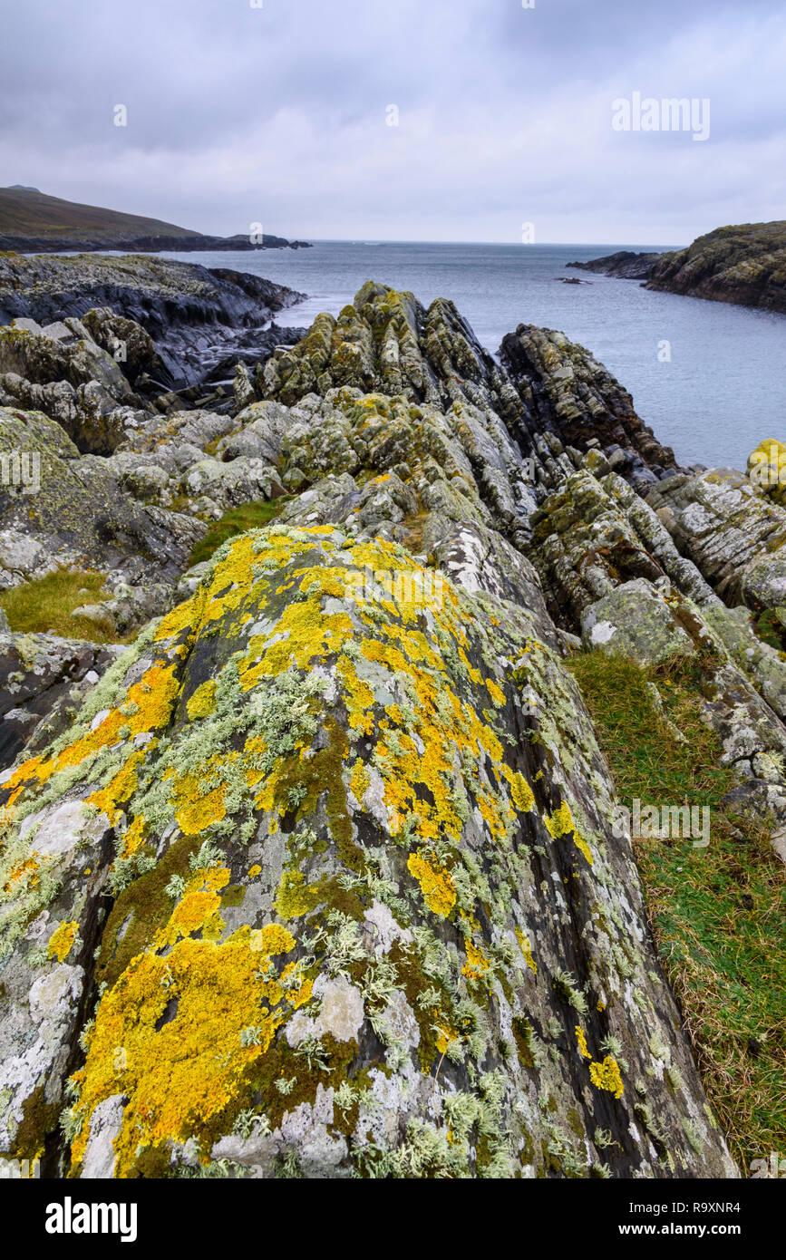 Lichen covered rocks, Kilchiaran Bay, Rhinns of Islay, Inner Hebrides, Argyll & Bute, Scotland - Stock Image