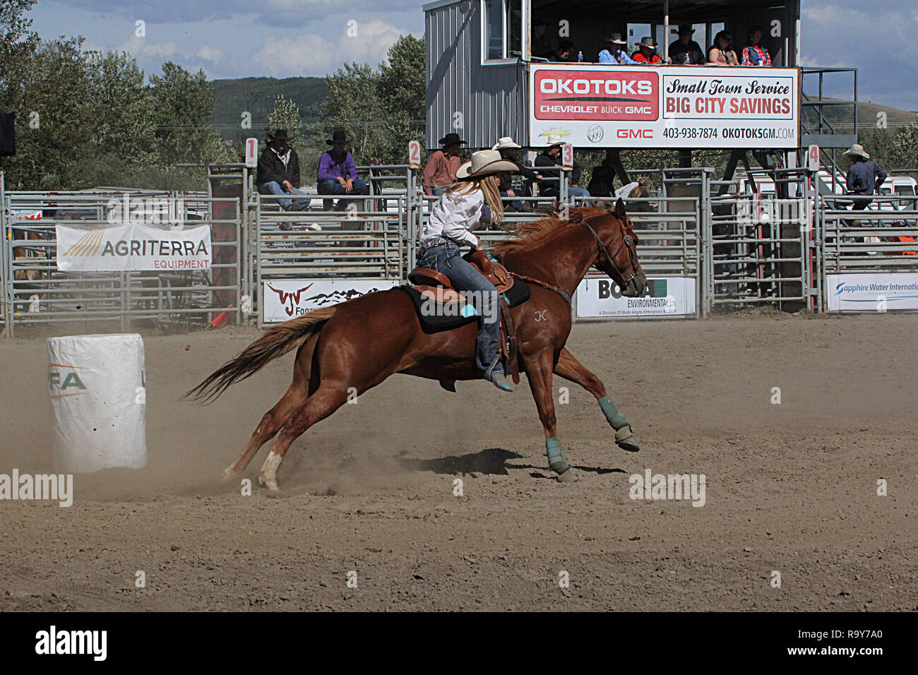 Rodeo, Calgary Stampede, Alberta, Canada, Barrel racing where horse and rider compete in a fast and furious timed event competition. - Stock Image