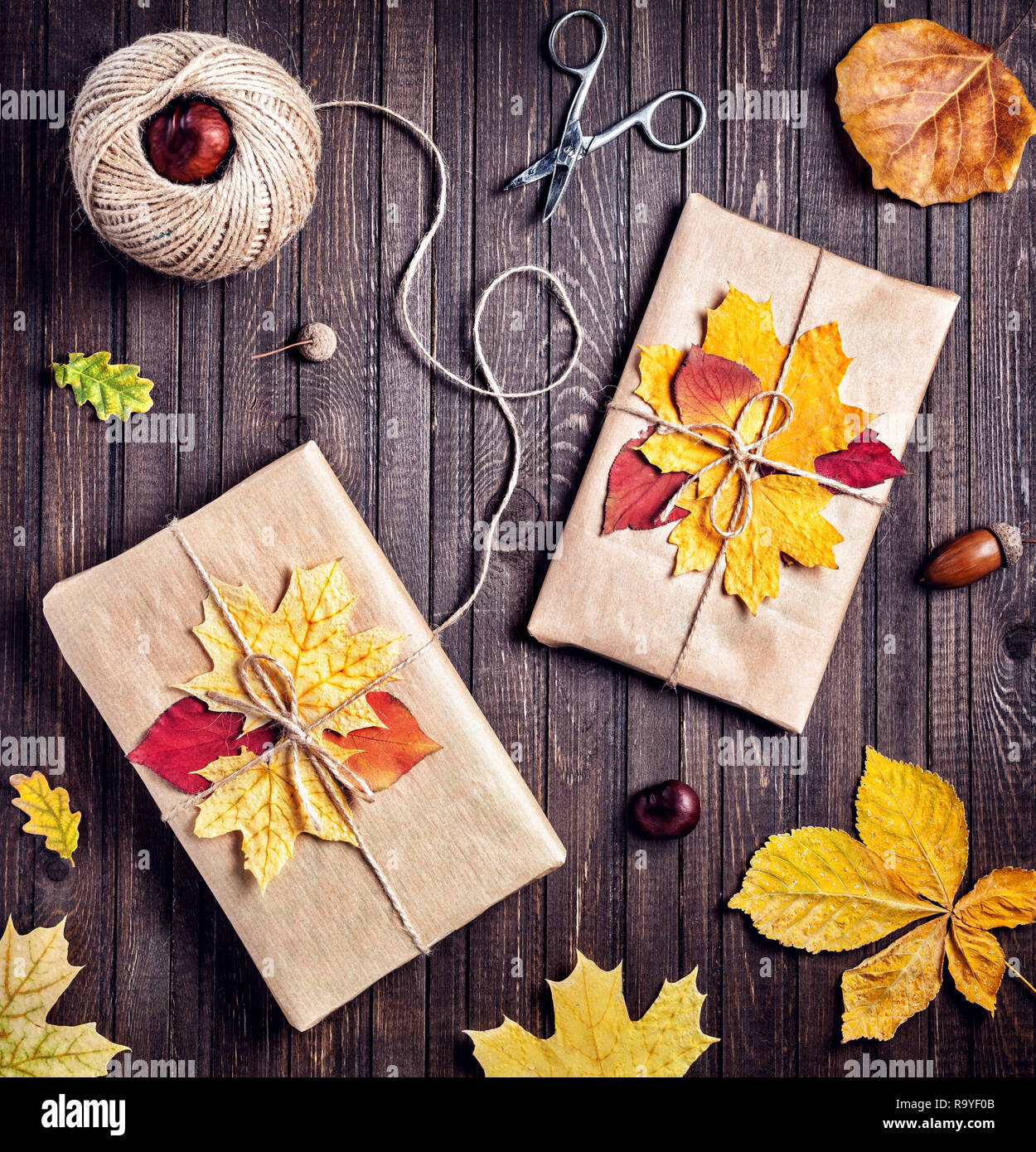 Two presents with autumn leaves decoration on wooden background in Autumn holidays - Stock Image