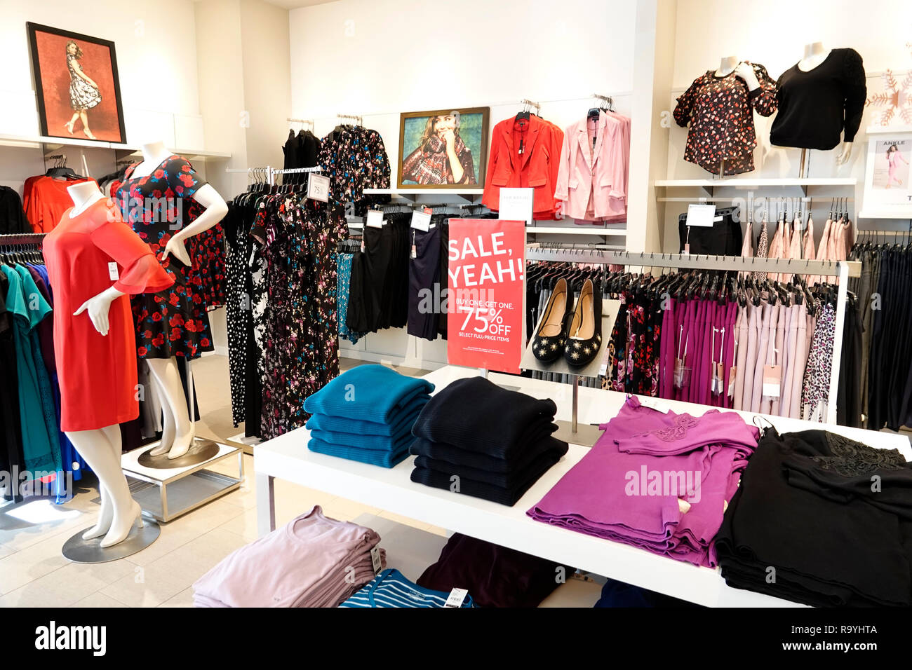florida fort ft lauderdale pembroke pines shops at pembroke gardens mall lane bryant plus size womens clothing fashion inside interior displa R9YHTA - Banana Republic Shops At Pembroke Gardens