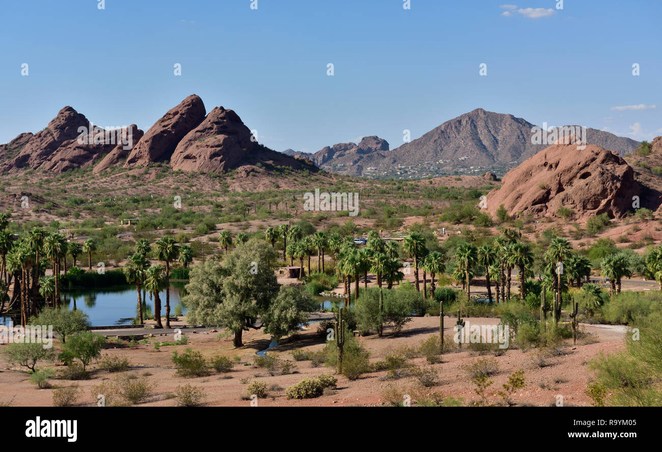 Papago municipal park in outskirts of  Phoenix and Tempe, AZ, with desert scenery plus small lake, palm trees, rocks, USA - Stock Image