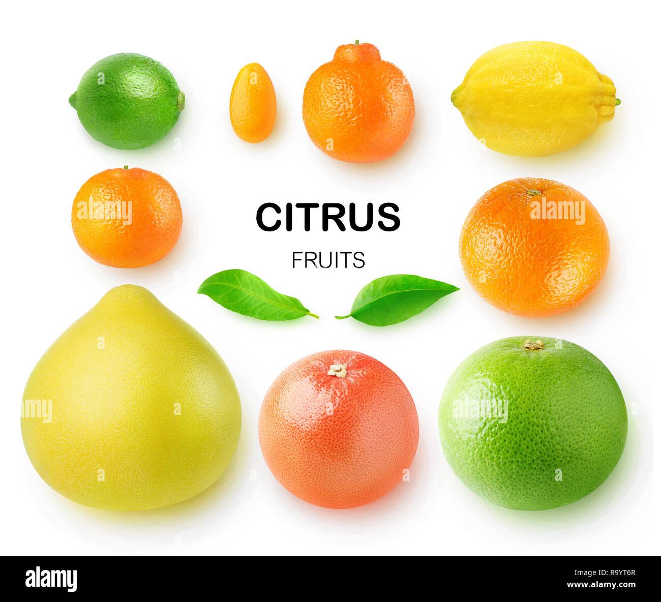 Isolated citrus fruits. Pomelo, grapefruits, orange, lemon, clementine, kumquat, lime and mandarin isolated on white background with clipping path - Stock Image