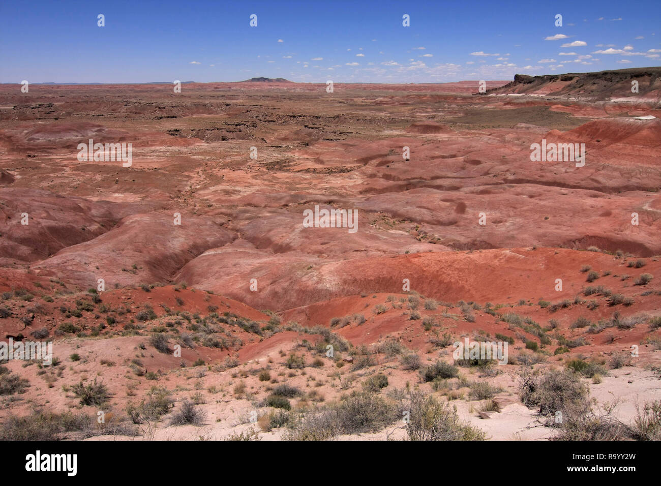 The Painted Desert, Petrified Forest National Park, Arizona, under a cloudless summer sky. - Stock Image