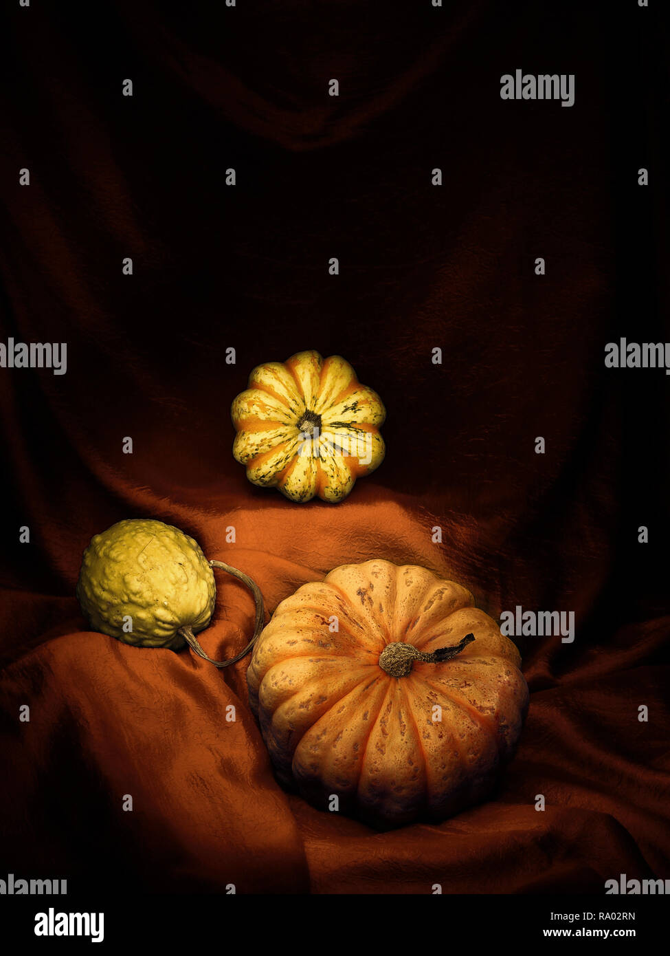 An arrangement of edible and ornamental winter squashes, pumpkins, on draped fabric. Light painting still life. Vertical. - Stock Image