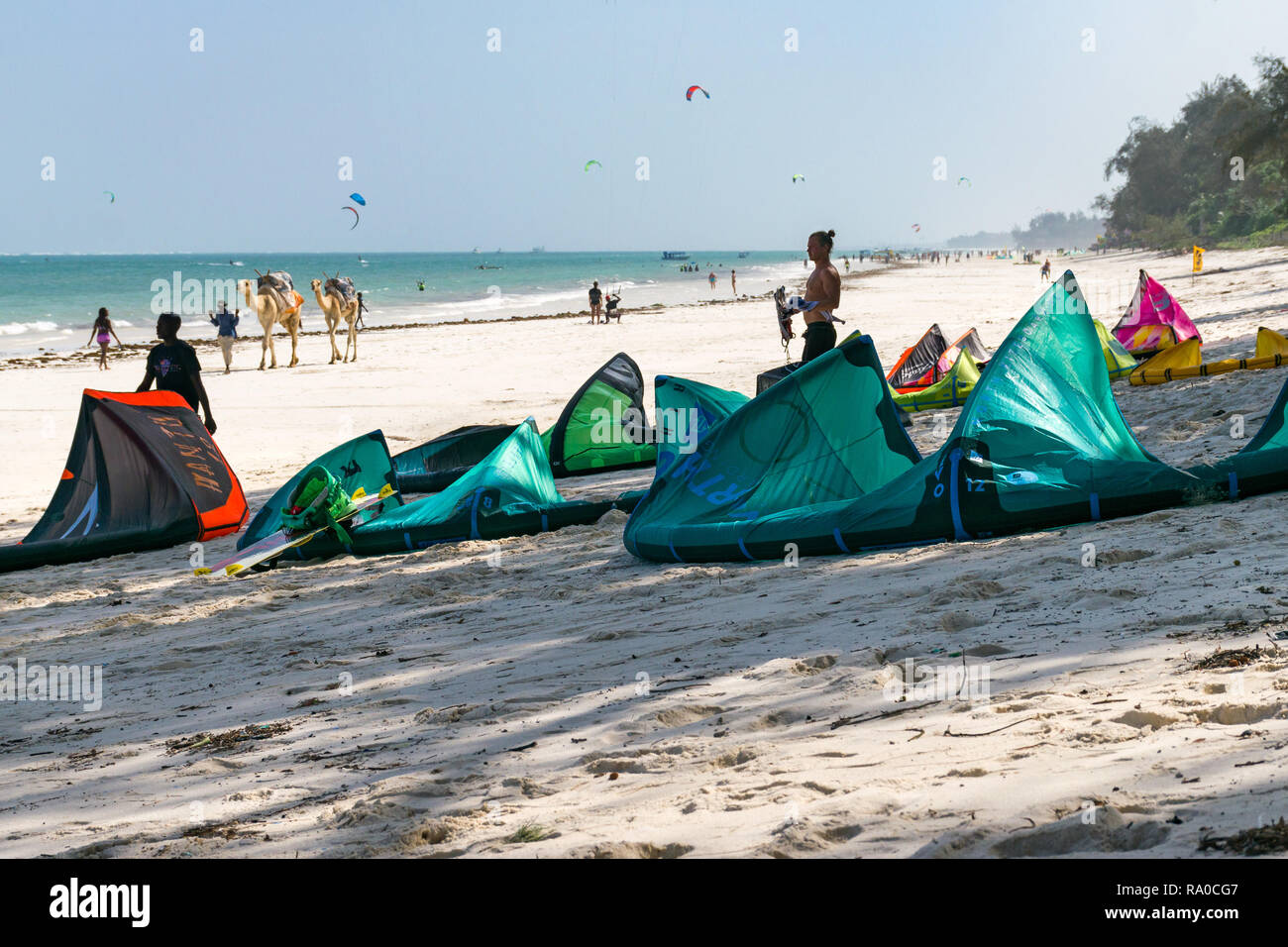 Several kitesurfing kites lie on the white sand beach with kitesurfers in the background in the Indian ocean, Diani, Kenya - Stock Image