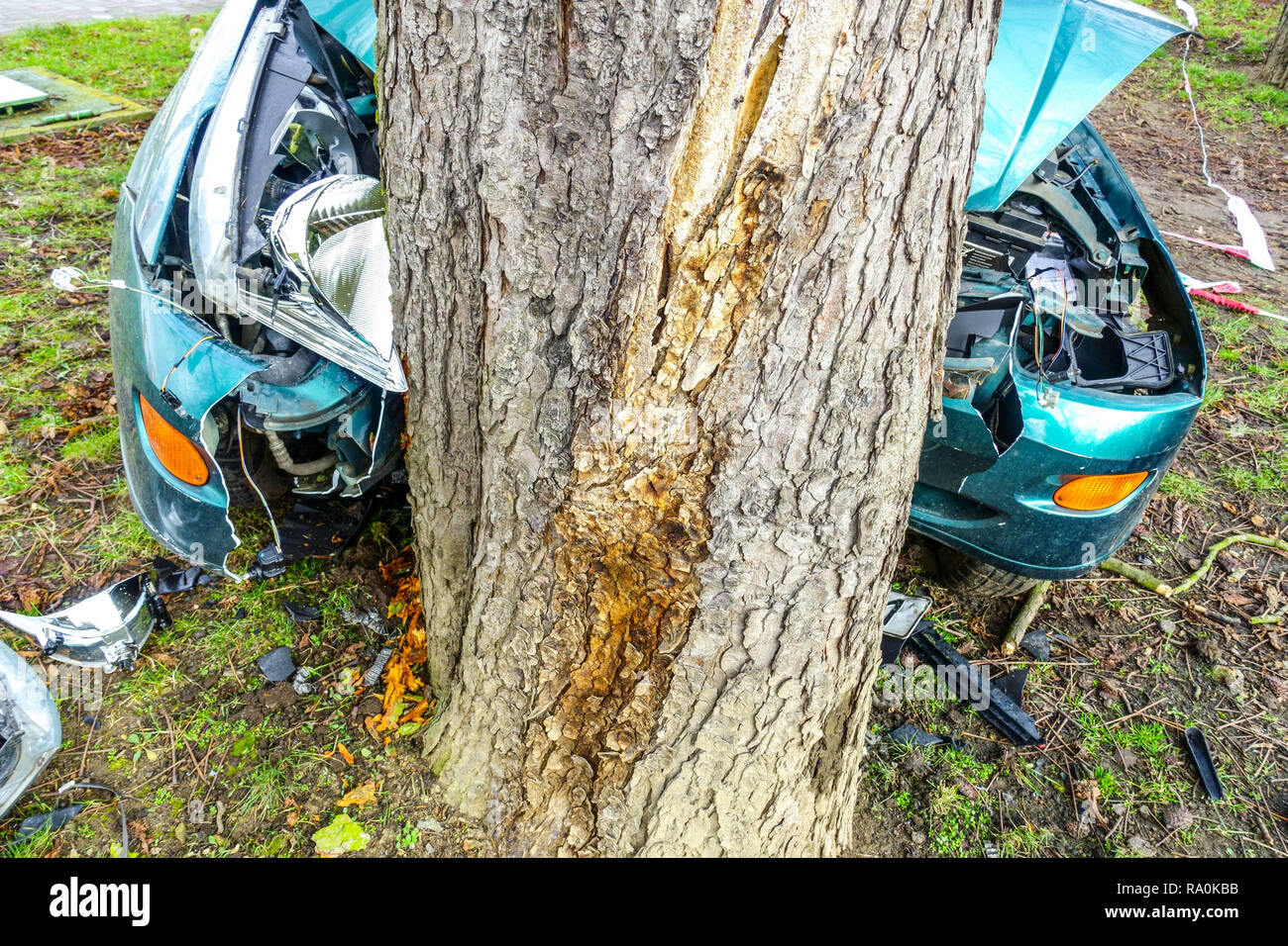 Car crash tree, Crashed car to a tree trunk, Czech Republic - Stock Image