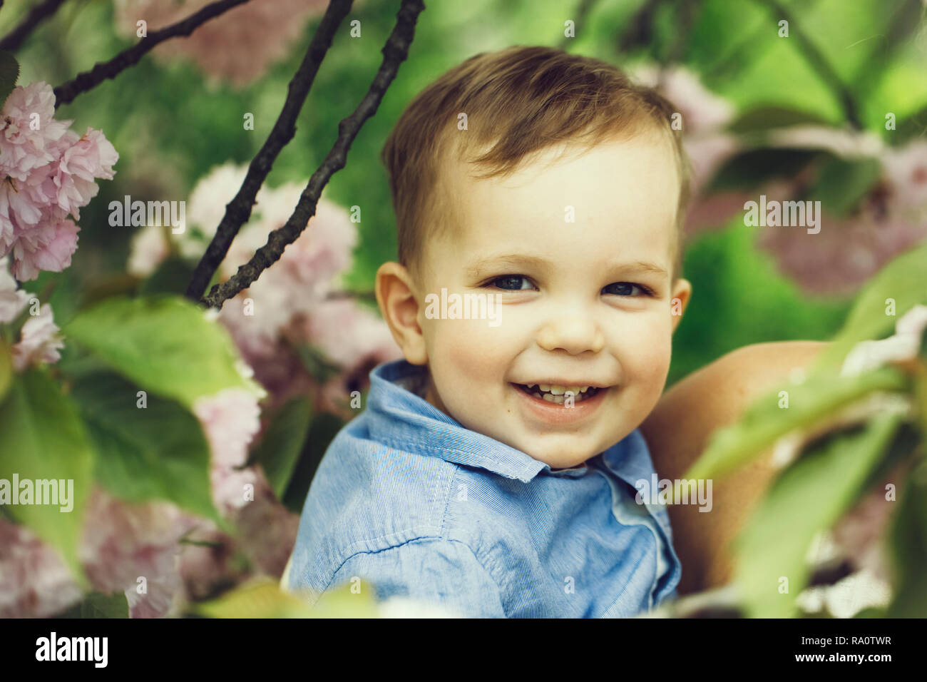 a739bbb10647 Cute happy baby boy, little child, with blond hair in blue shirt smiling in  mother arms among pink blossoming flowers and green leaves on sunny spring
