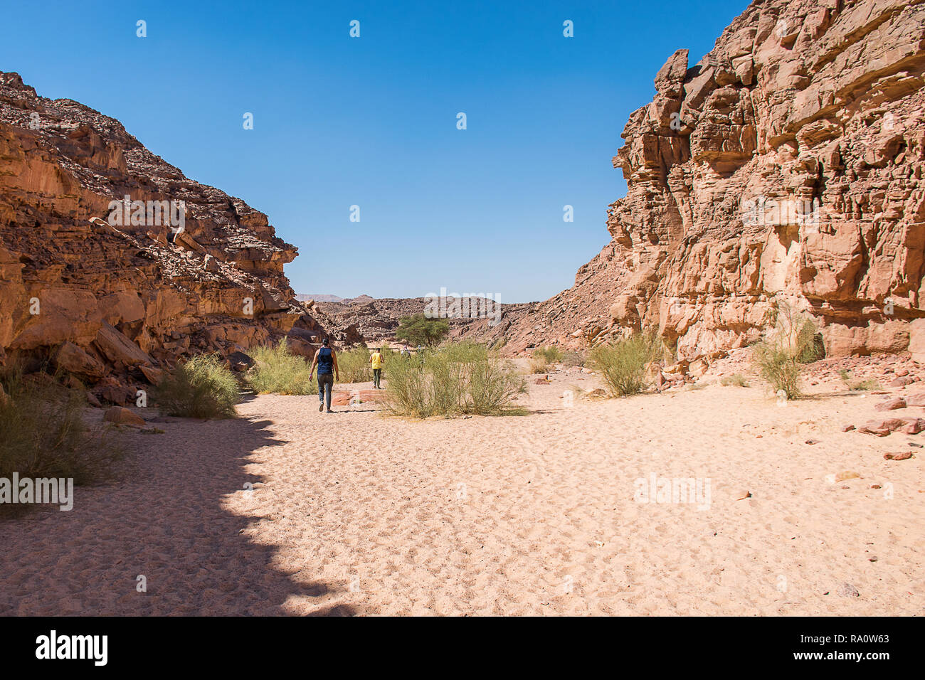 Colored canyon in Nuweiba Dahab Egypt . Coloured Canyon is a rock formation on Sinai peninsula. It is a labyrinth of rocks, some of them have about 40 - Stock Image