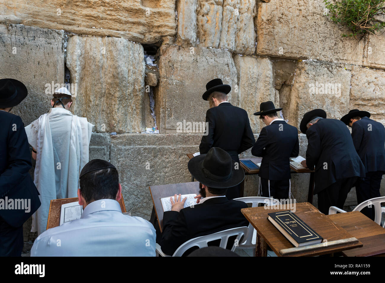 Orthodox Jews praying at the Western Wall in Jerusalem. Israel - Stock Image