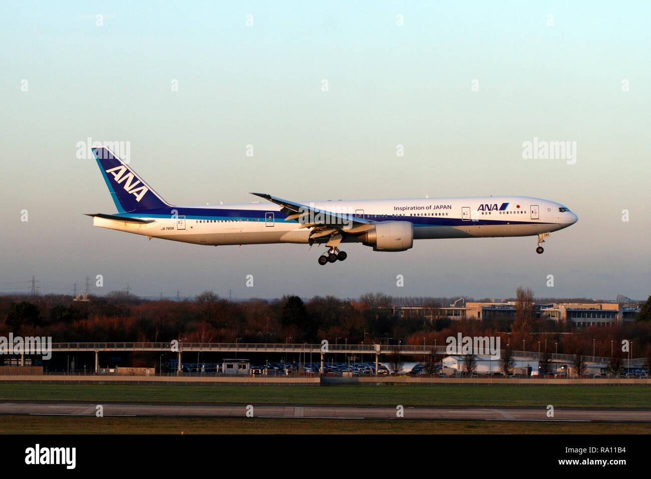 Boeing 777-300, ANA, JA785A, All Nippon Airways, landing at Heathrow, London airport terminal 5 runway. UK - Stock Image
