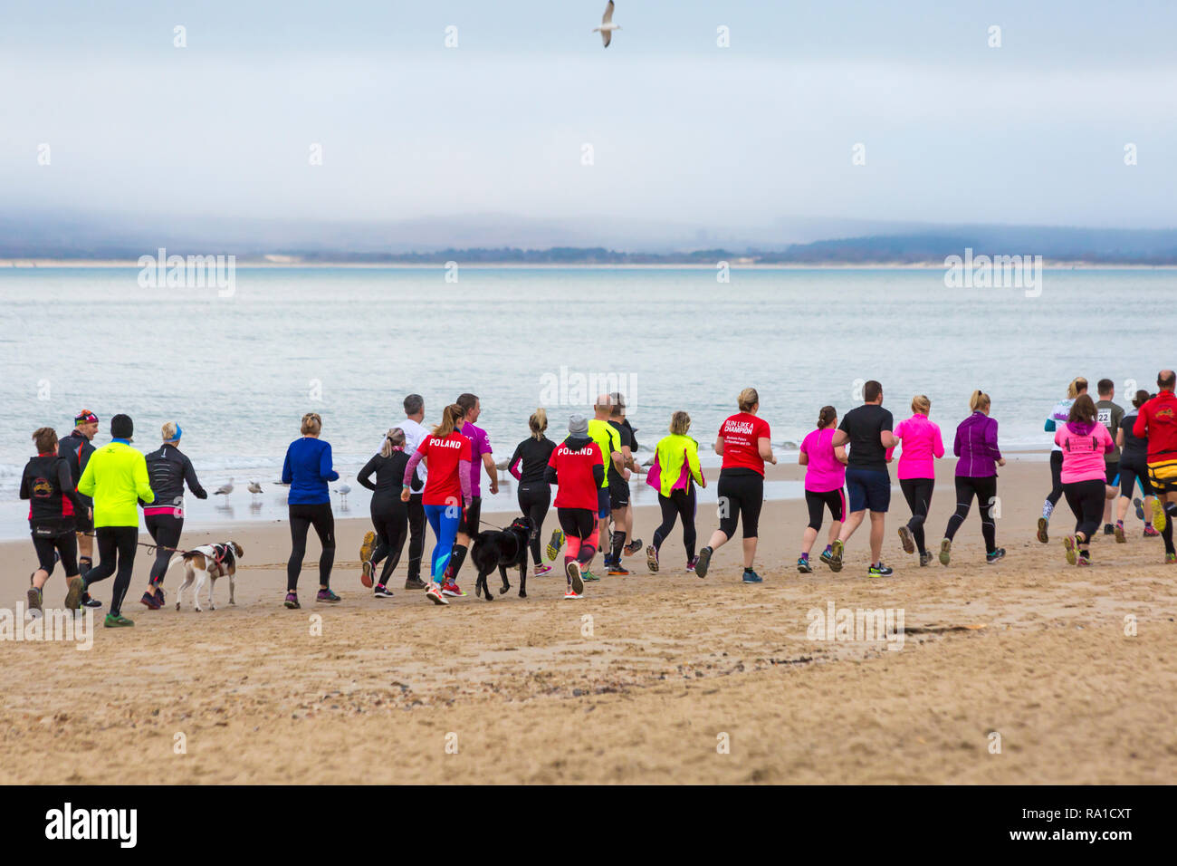 Bournemouth, Dorset, UK. 30th December 2018. Participants take part in the Beach Race, Race the Tide, a low tide beach run along the beautiful shoreline of Bournemouth beach towards Sandbanks beach. Runners run the 5k or 10k race along the seashore and over the groynes before the tide comes in - good exercise after the excesses of Christmas! Credit: Carolyn Jenkins/Alamy Live News Stock Photo