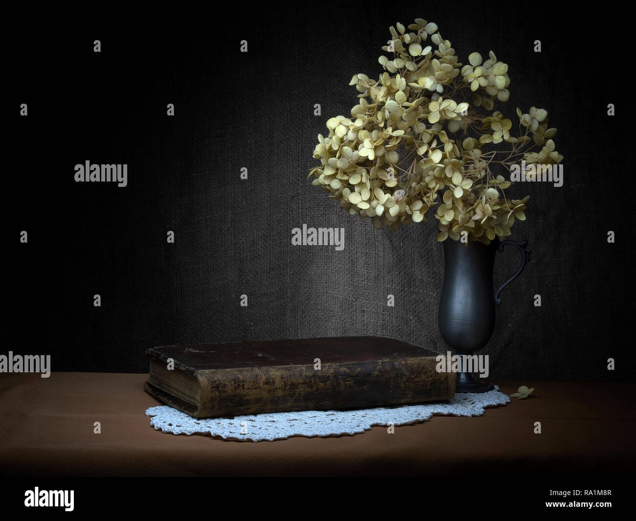 Melancholy, still life with old book, dried hydrangea flowers. Baroque, chiaroscuro style by means of light painting. - Stock Image