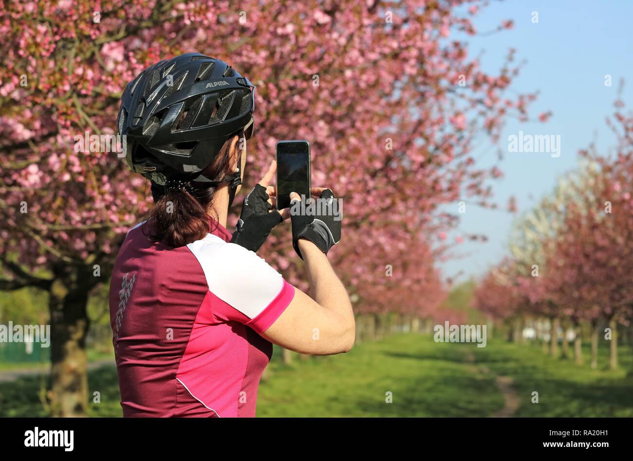 20.04.2018, Brandenburg, Teltow, Deutschland, Radfahrerin macht ein Foto von bluehenden Kirschbaeumen in der TV-Asahi-Kirschbluetenallee. 00S180420D07 Stock Photo
