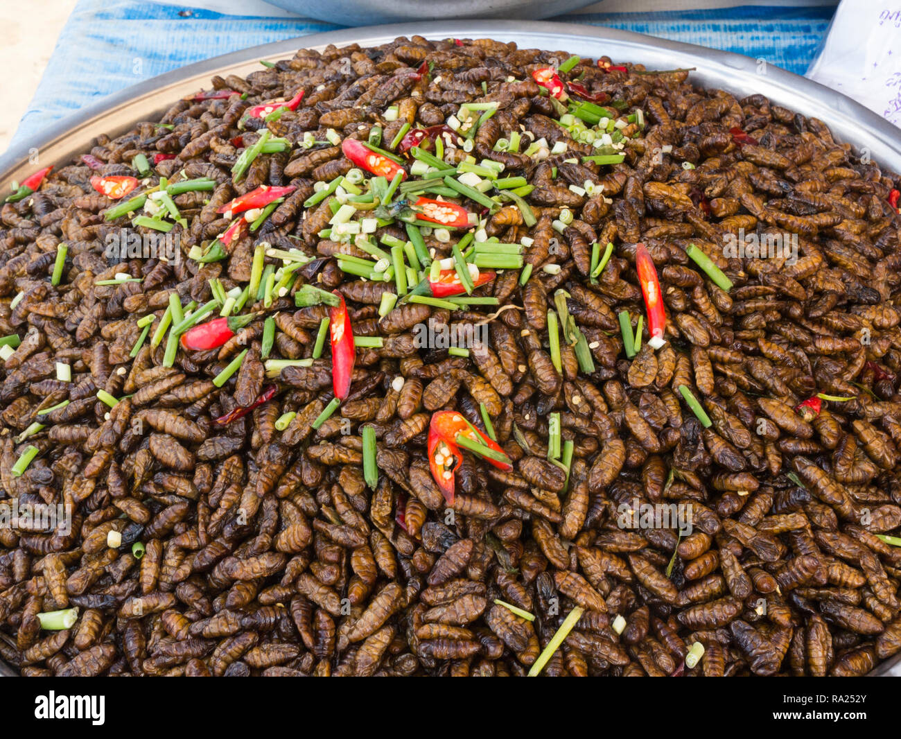 Reknown Stock Photos & Reknown Stock Images - Alamy