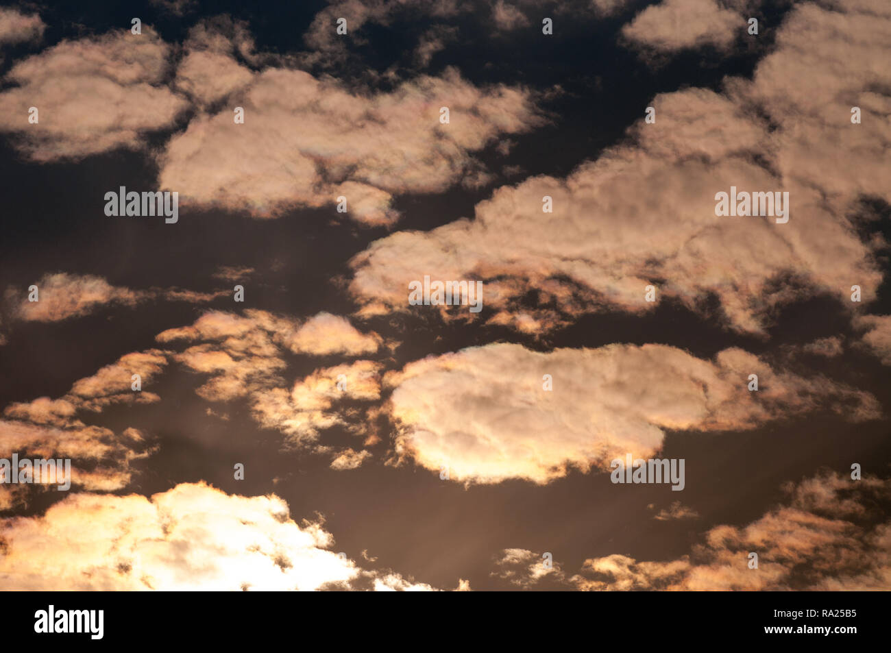 Fluffy clouds in the sky after sunset - Stock Image