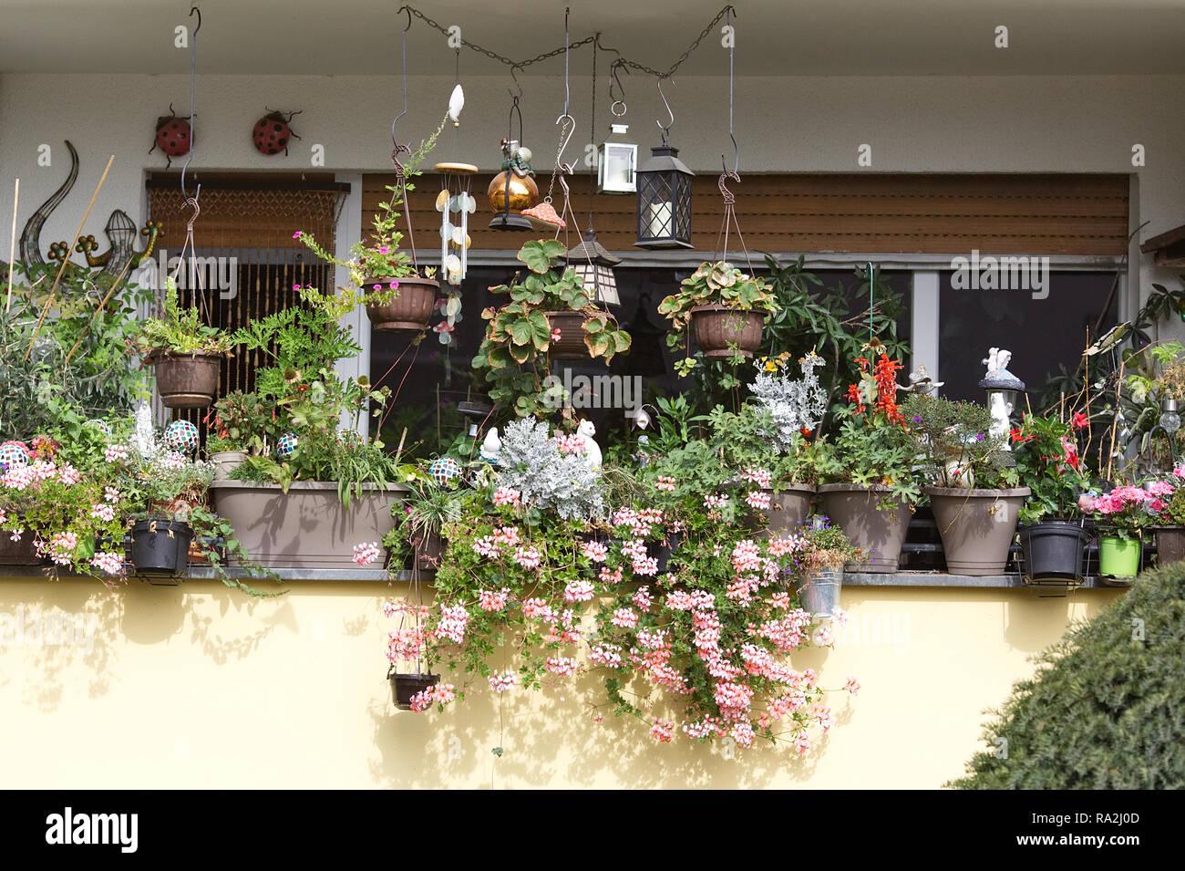 Decorative balcony garden. - Stock Image