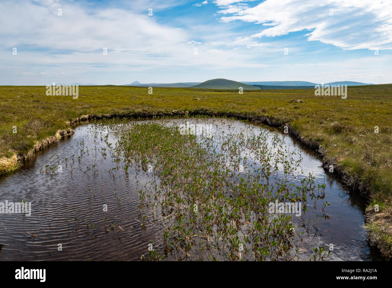 The largest blanket bog and peatland in Europe of Forsinard Flows Nature Reserve in the Scottish Highlands of northern Scotland Stock Photo