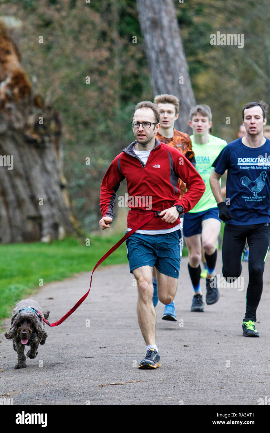 Chippenham, Wiltshire, UK. 1st January, 2019. Participants are pictured running on New Years day morning as they take part in a 5km parkrun in Monkton Park, Chippenham, Wiltshire. Credit: Lynchpics/Alamy Live News - Stock Image