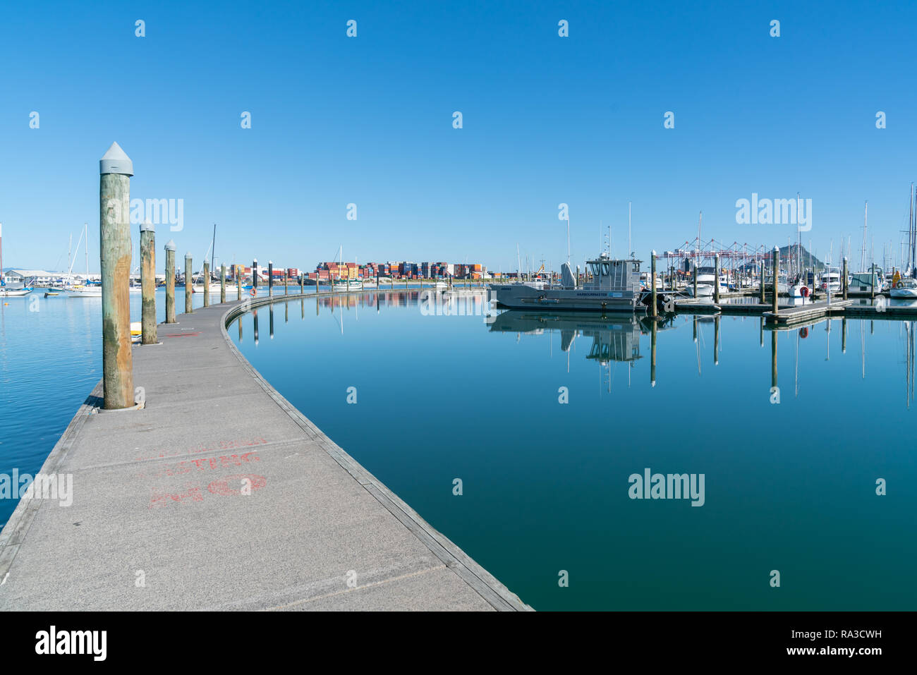 TAURANGA, NEW ZEALAND - DECEMBER 18 2018; Long curving lines of floating pier of Bridge Marina and boats with port container storage and iconic Mount  - Stock Image