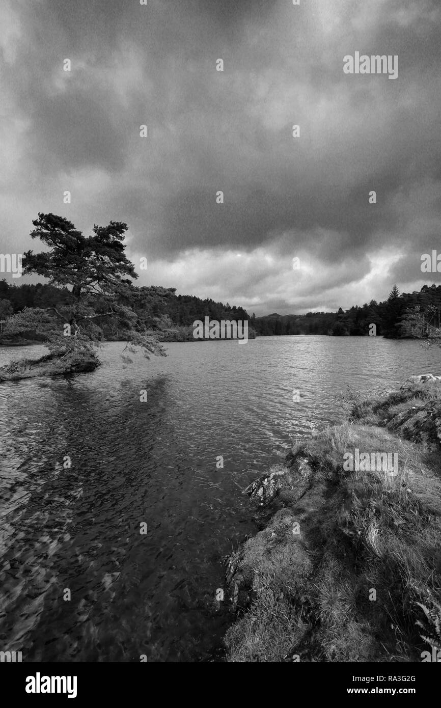 Autumn view over Tarn Hows, Lake District National Park, Cumbria, England, UK - Stock Image