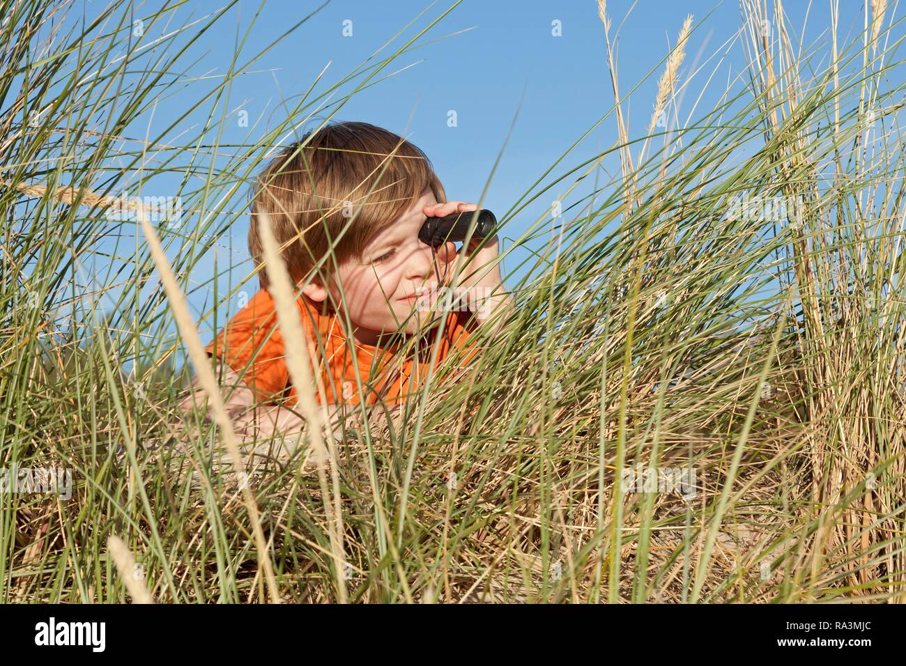 Boy in the dune grasses, looking through a telescope, Warnemunde, Mecklenburg-Western Pomerania, Germany - Stock Image