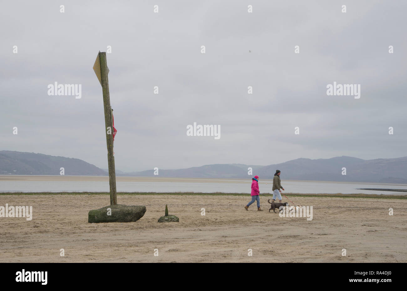 People walking their dogs on the beach in Ynyslas at the Dyfi estuary, near Borth and Aberystwyth, Ceredigion,Wales,UK Stock Photo