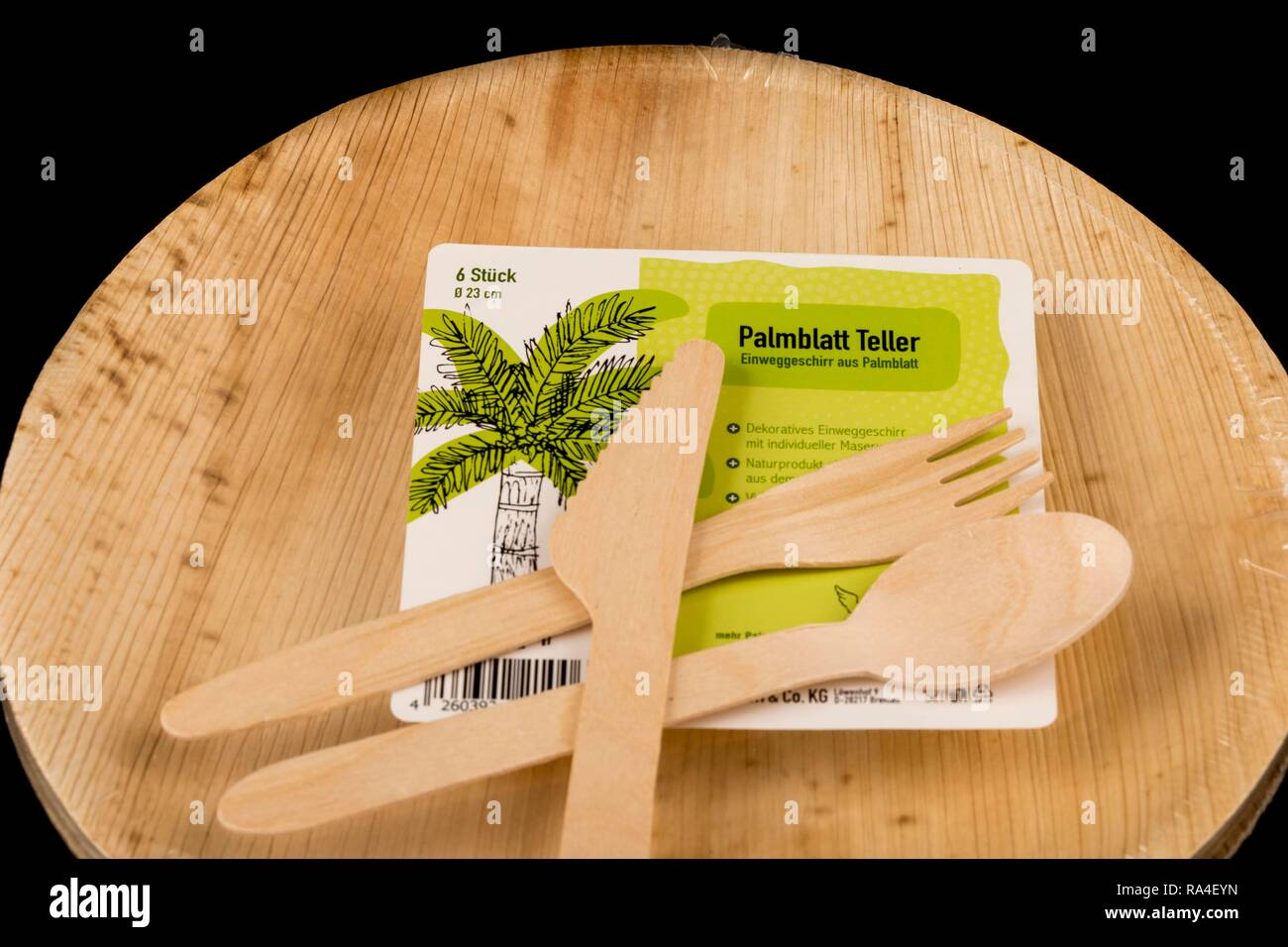 Disposable wooden cutlery, recyclable, palm leaf plate, environmentally friendly - Stock Image