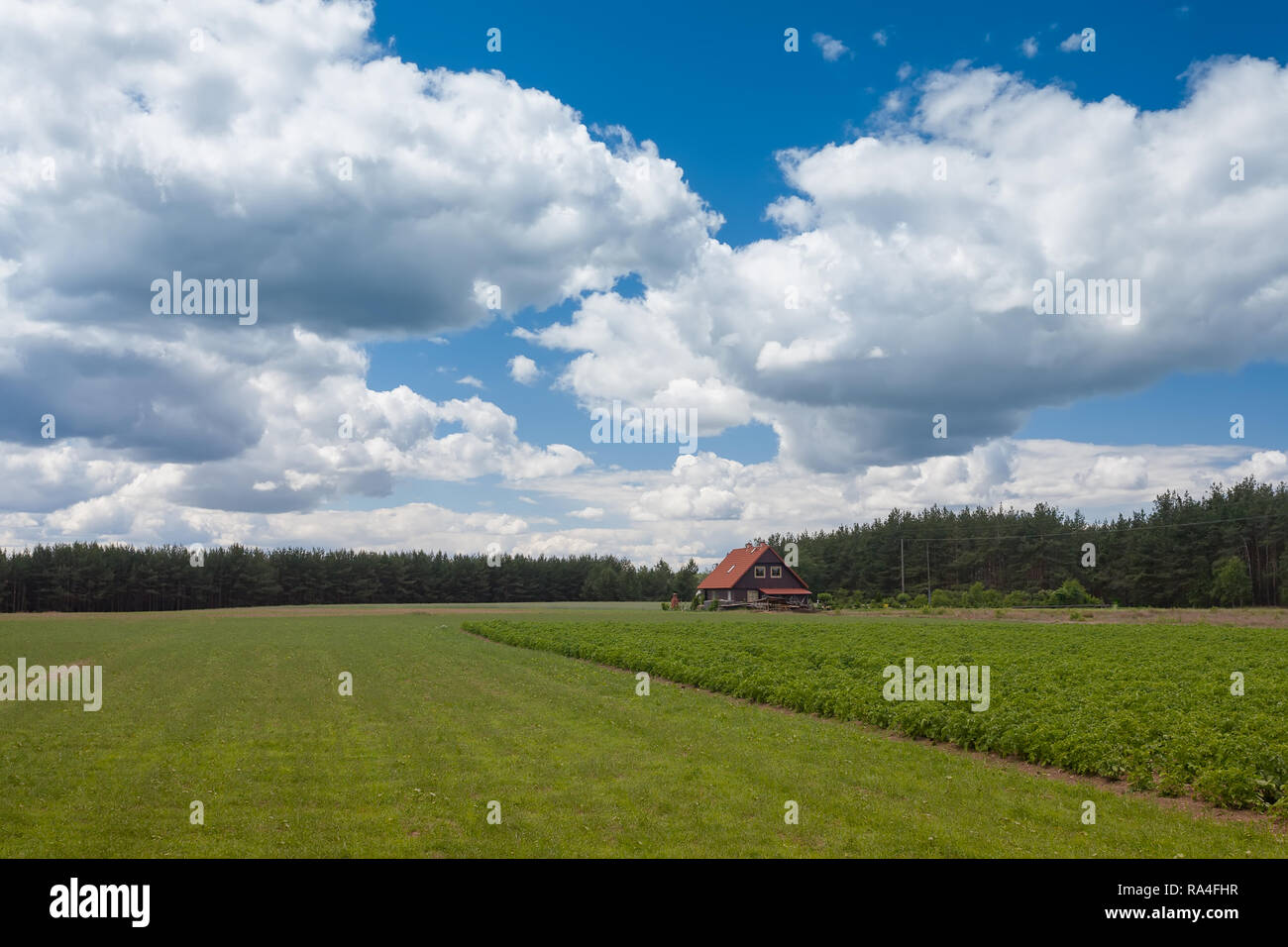 Rural scenic landscape clouds sky field house - Stock Image