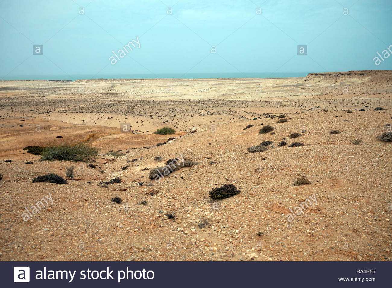 Western sahara stone desert and Atlantic ocean - Stock Image
