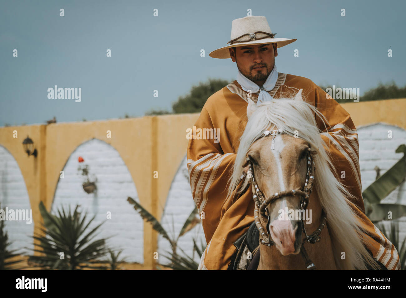 TRUJILLO, PERU - SEPTEMBER 2018 : Cowboy on horse in Peru, riding towards camera, viewed in close-up from the front with copy space Stock Photo