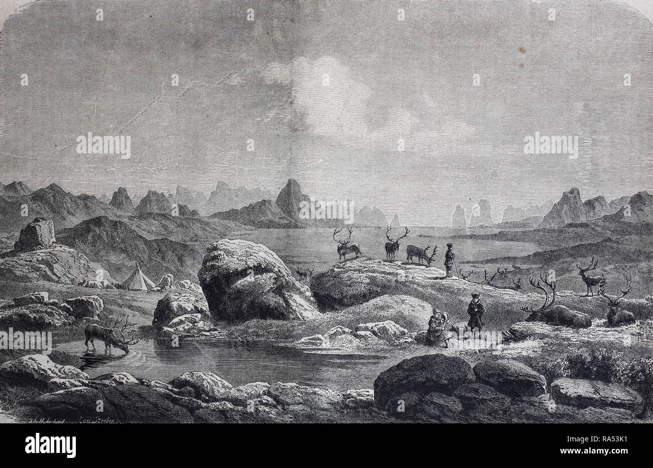 Digital improved reproduction, Sami people, Saami, Lapps or Laplanders with the reindeer in summer, Greenland, Fjeld - Lappen aus Grönland mit Rentieren auf ihrer Sommerweide am Eismeer, from an original print from the year 1865, 19th century, - Stock Image