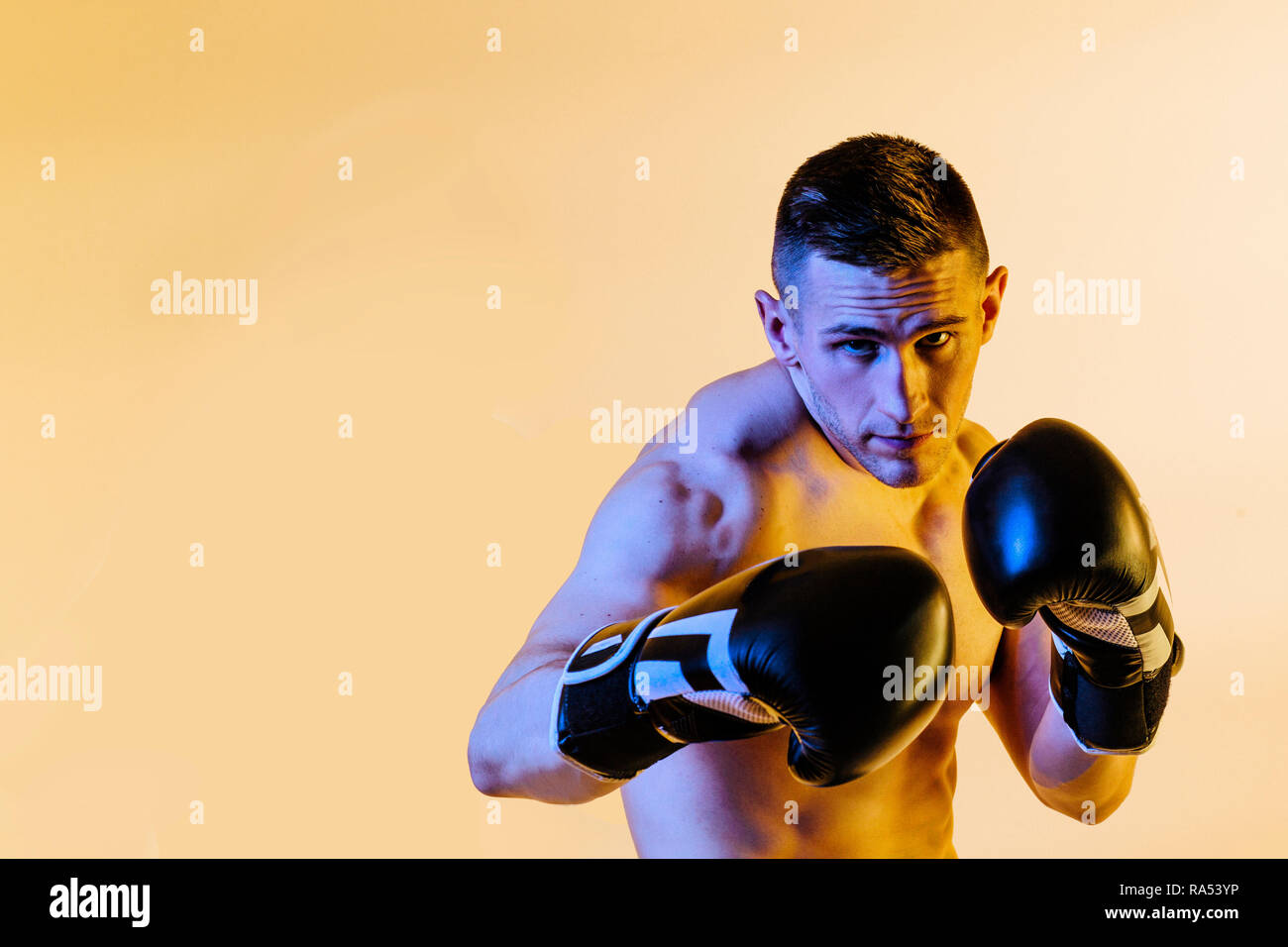 studio portrait of a boxer in defense position - Stock Image