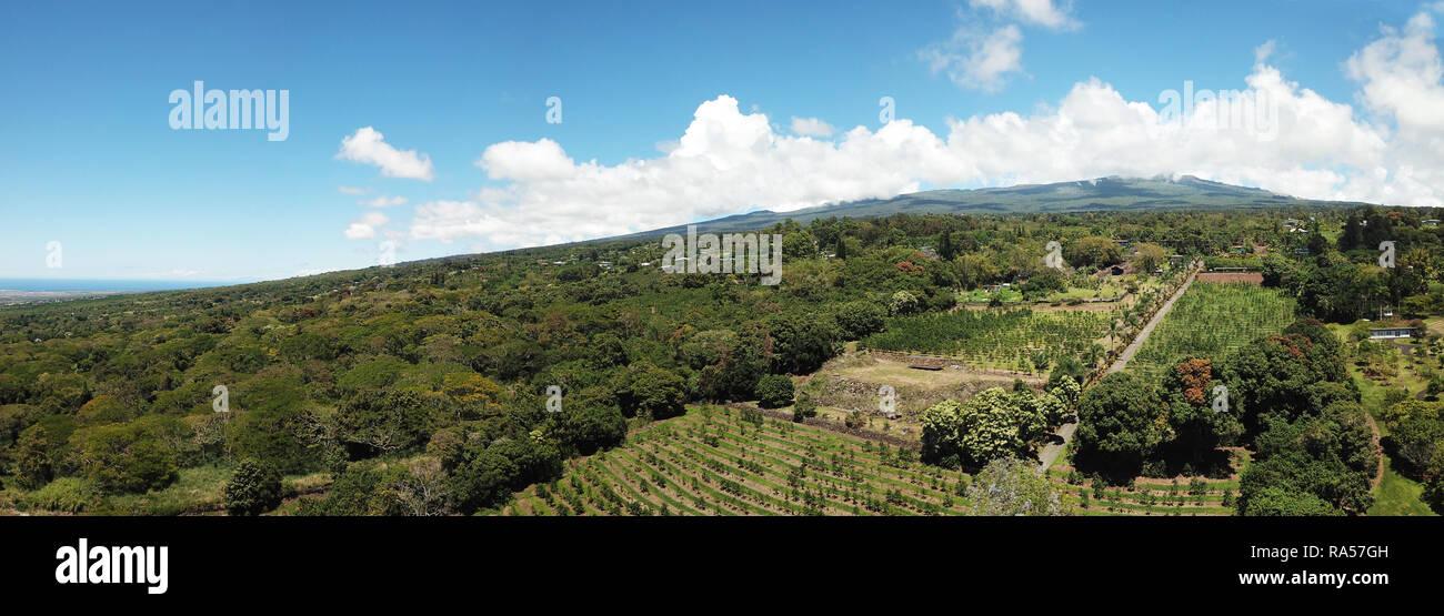 Panoramic aerial view of the slopes of Mauna Loa, Big Island hawaii - Stock Image