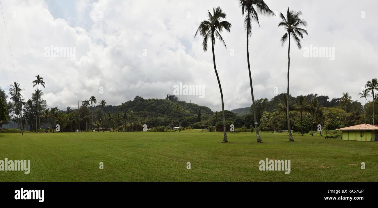Lush tropical park on the Big Island of Hawaii - Stock Image